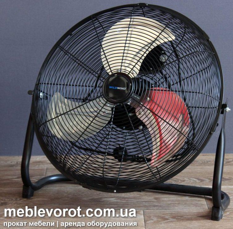 Аренда (прокат) напольных вентиляторов 300 грн/стуки